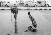Dario Mitidieri - Street Children of Bombay
