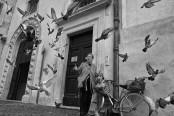 043_Portfolio_Street_Roma_October_2015_0001