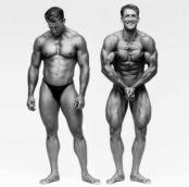 Schatz_Body14