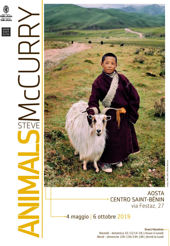 Locandina della mostra Animals McCurry ad Aosta