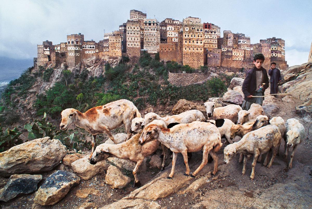 un pastore guida le sue pecore sui pendii scoscesi dello Yemen