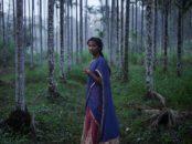 Kerala-India-Tourism-Campaign-Joey-L-014